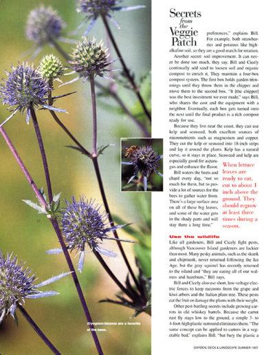 published-magazine-photography 0018