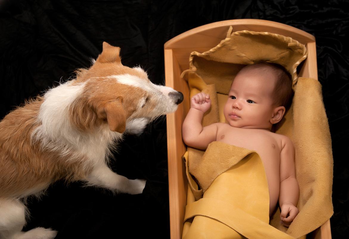 Custom Created Baby Photo Book