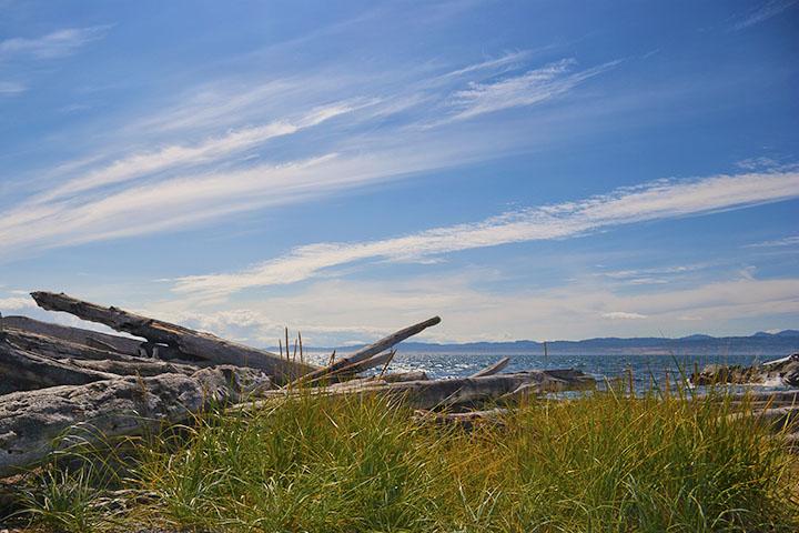 Beautiful Beaches Victoria BC Tour