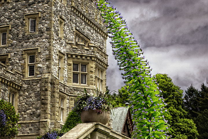 Castle Garden Walking Tour